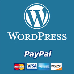 Fundraising WordPress plugin