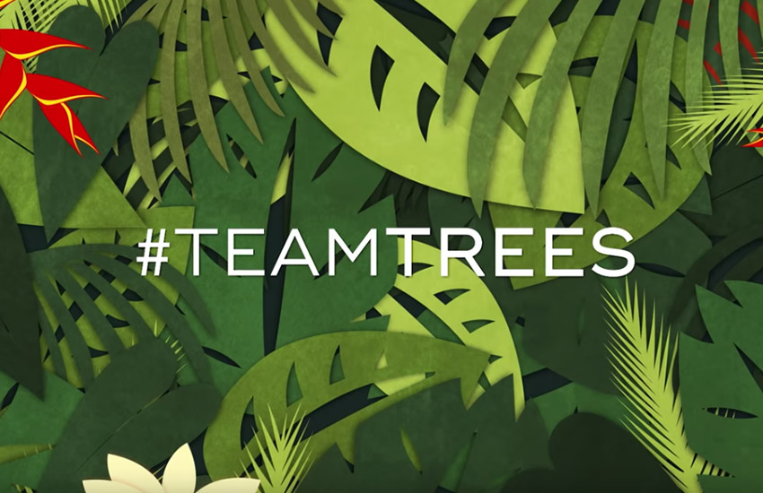 Team Trees l'iniziativa per piantare 20 milioni di alberi